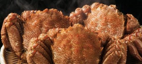 黄金毛ガニの通販は北海道の長万部産が美味しい