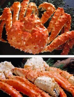 北海道産のカニを天ぷらで食べたい!どの蟹が良い?